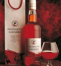 Hipótesis sobre Navarra.